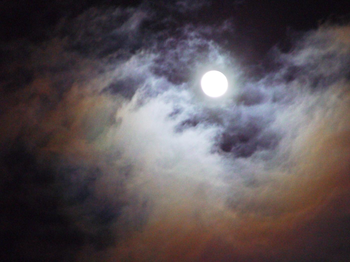 moonlight-1474804